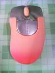 mousemomo480x640.jpg